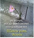 Помощь Потерпевшим (пострадавшим) от преступлений в С-Петербурге и Лен.области Санкт-Петербург